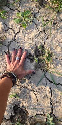 Big Footprints spotted in Wainfleet Ontario