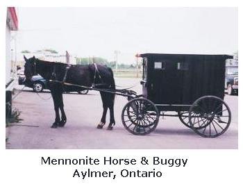 Mennonites in Ontario