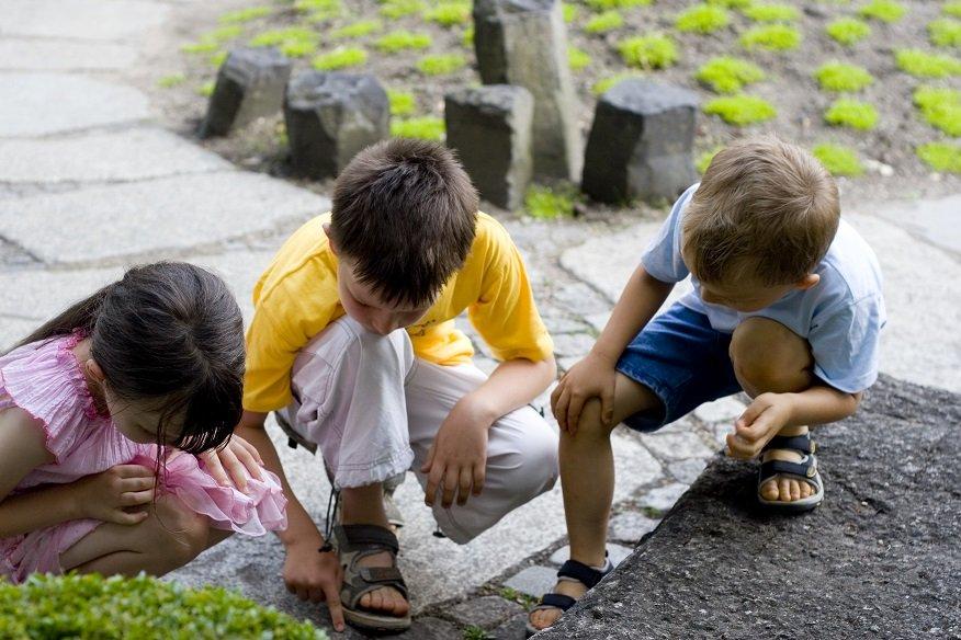 Discover Southern Ontario, homeschooling in Ontario