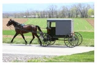Mennonite Horse and Buggy in Ontario