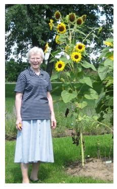 Heritage Line Herbs, sunflowers and customer