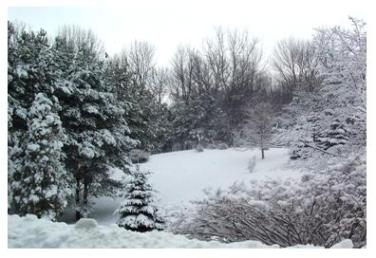 Southern Ontario in winter, crisp and cold snow