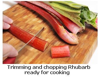 chopping Ontario rhubarb
