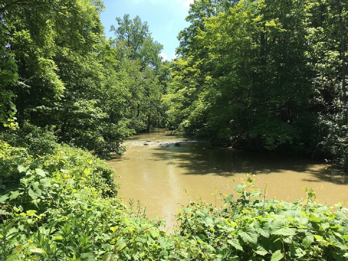 The river at 42815 Beck Line, St Thomas