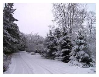 Snowmobile Trails District 5
