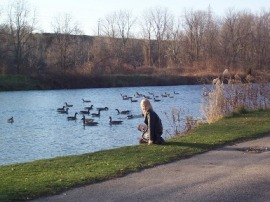 Watching the geese in Waterworks Park, St Thomas