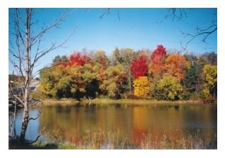 Dalewood Lake and Conservation Area, St Thomas, Ontario
