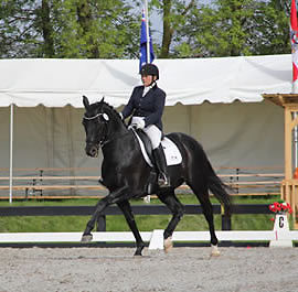 Equestrian Dreams - Dressage