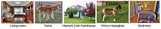Hanna's Irish Farm House