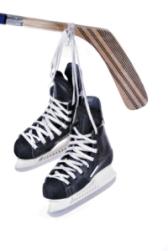 Hockey Skates, Wayne Gretzky