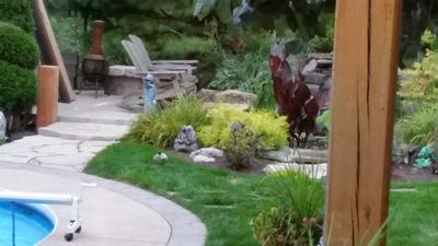 I Live In Kitchener, Ontario, And This Morning I Was Looking Out My Kitchen  Window To The Backyard And Saw My Dogs Running Behind Our Waterfalls.