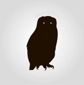 Owl in Sault Ste Marie Ontario