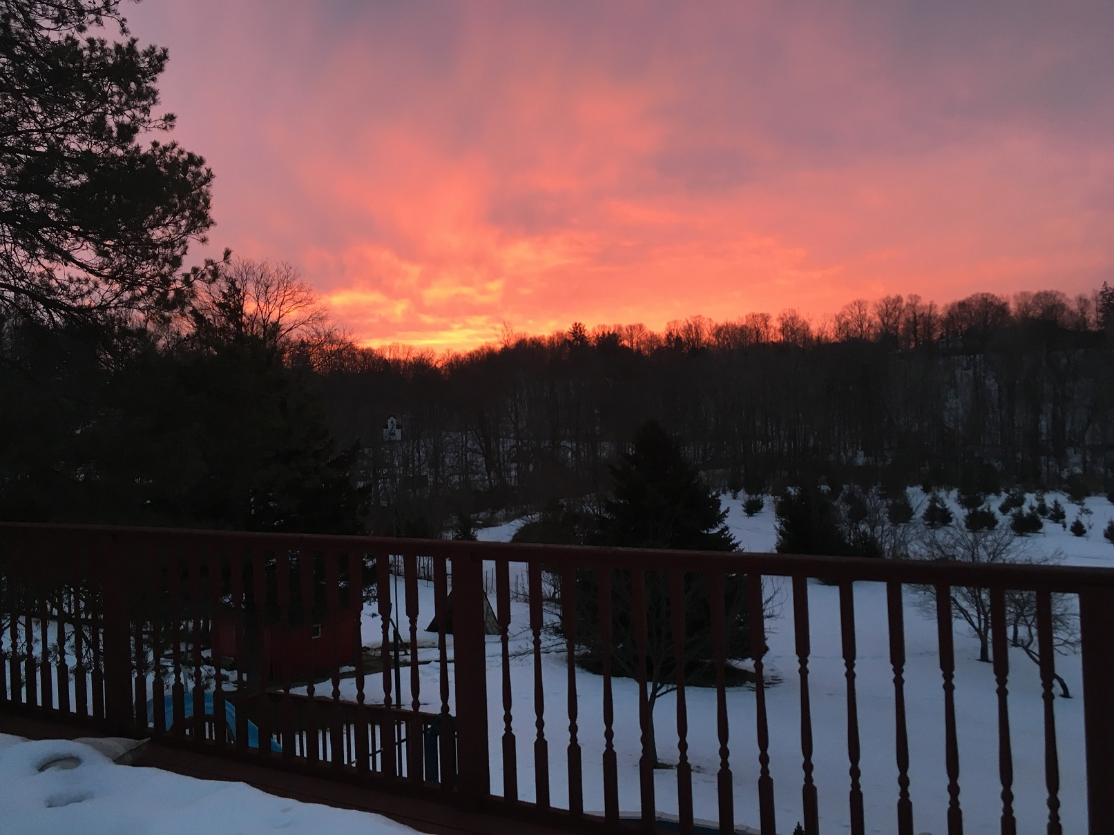 Winter sunrise over the field and goat pen, Central Elgin, Ontario