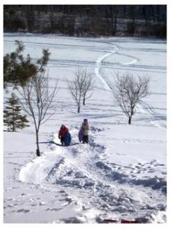 Winter in Ontario - tobogganing