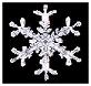 Snowflake of Winter in Ontario