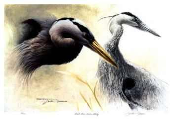 Great Blue Heron by Michael Dumas