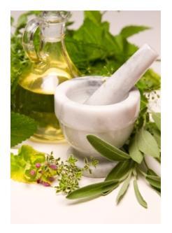 Herbalist Christine Dennis