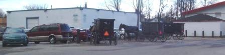 Mennonite Horses, Ontario