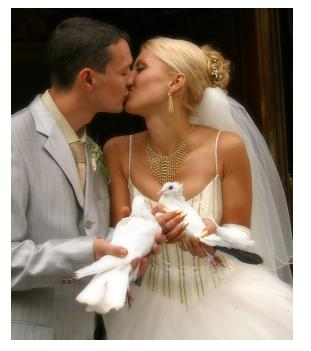 Wedding couple kissing and holding two white doves to release