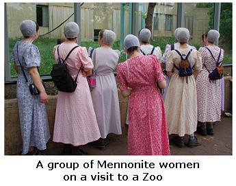 Mennonite Women at the Zoo