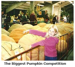 Simcoe Fall Fair - pumpkin competition