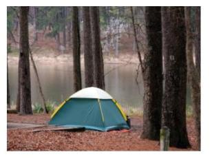 Camping at Pittock Conservation Area