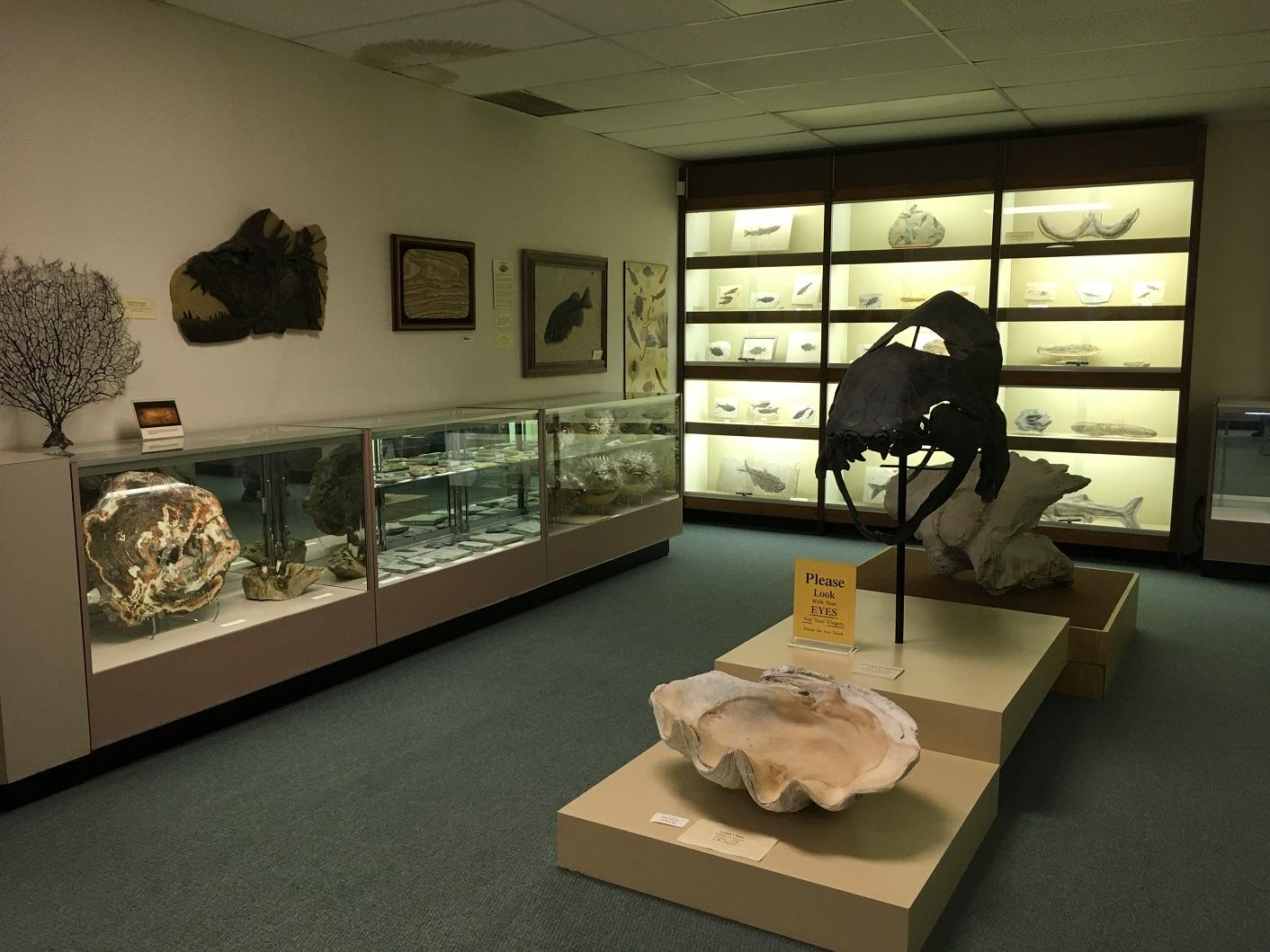 Stones & Bones Museum Sarnia