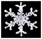 Snowflake of Winter in Ontario